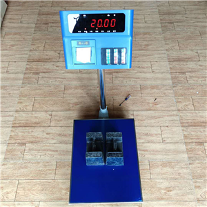 宁乡100kg打印雷火竞技app台秤